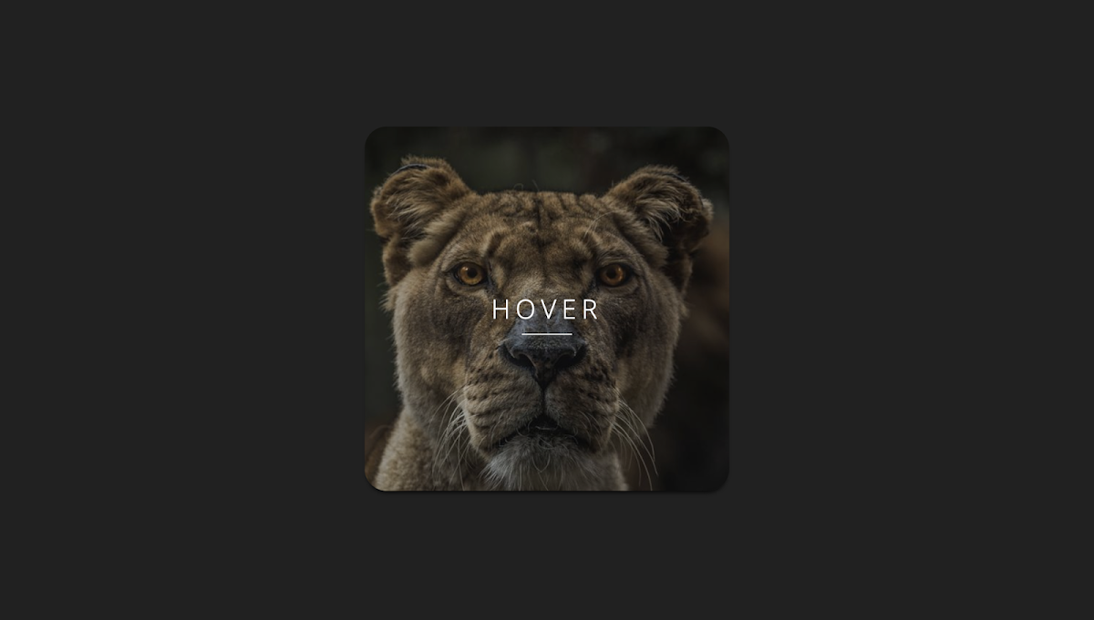 Simple pure CSS button hover effect 4